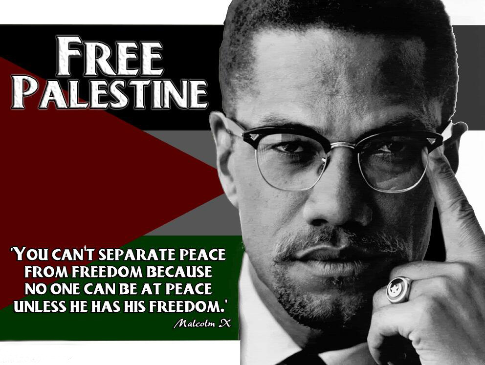 freedom-malcolm-x-free-palestine.jpg