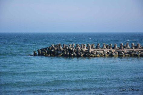 black sea...my love !