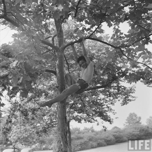 eartha-kitt-playing-in-tree-5.jpeg