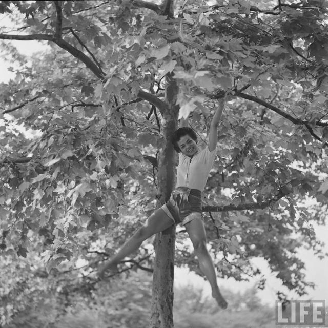 eartha-kitt-playing-in-tree-2.jpeg