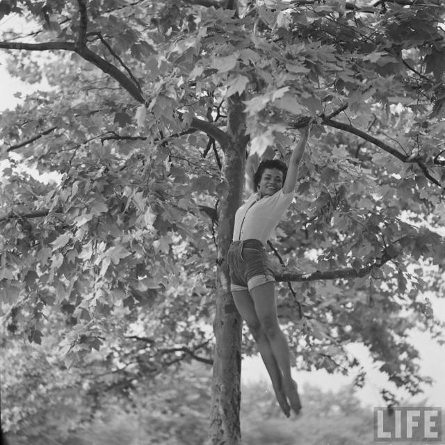 eartha-kitt-playing-in-tree-1.jpeg