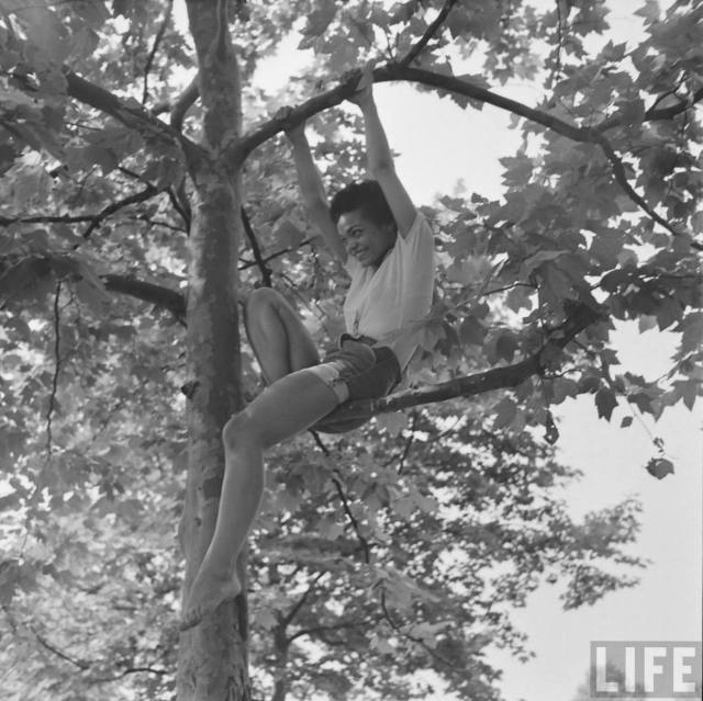 eartha-kitt-playing-in-tree-4.jpeg