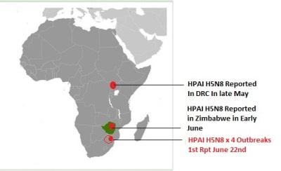 South%2BAfrica%2BH5N8.jpg