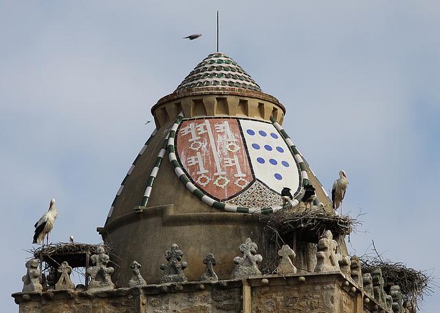 stork+nest+10.jpg