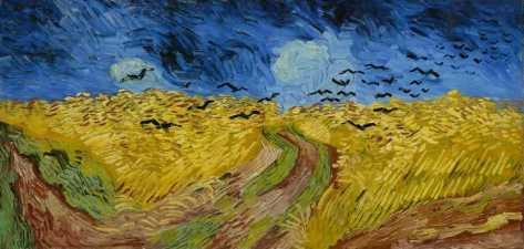 campo-di-grano-con-volo-di-corvi