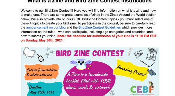 """The """"Bird-zine"""" competition: a creative challenge for Caribbean residents"""