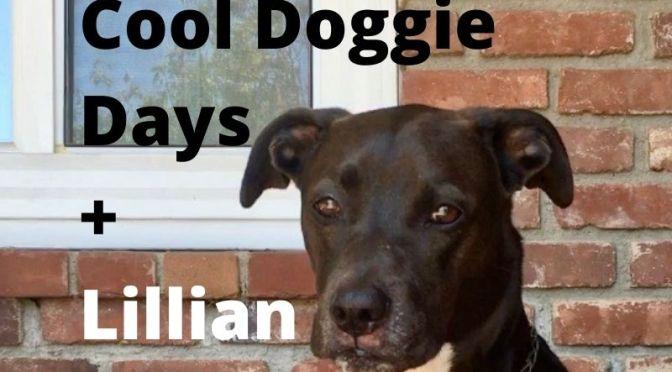 Cool Doggie Days + Lillian Brummet's Leeks Recipe