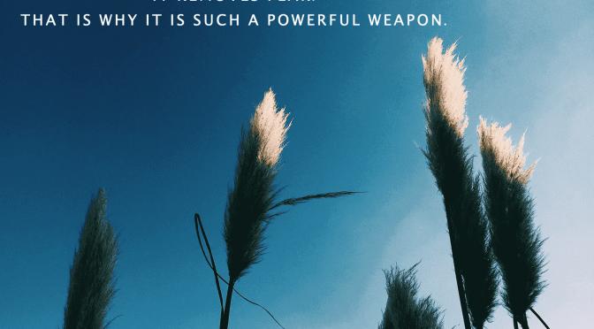 Weekly Wisdom 8 June