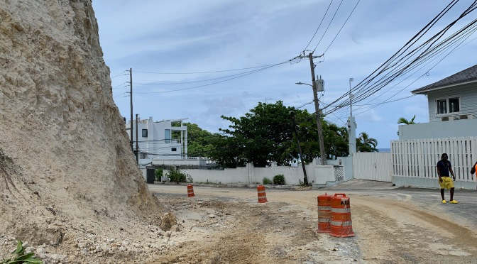 Stand Up for Jamaica adds its voice: Urgent, stop the work on San San now